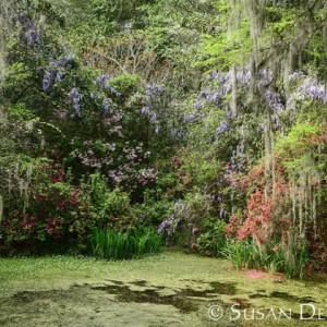 Enchanted fairytale-like garden at Magnolia Plantation