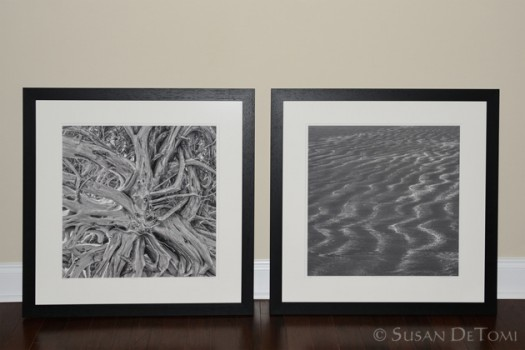 Etched Series framed in solid black with detailing